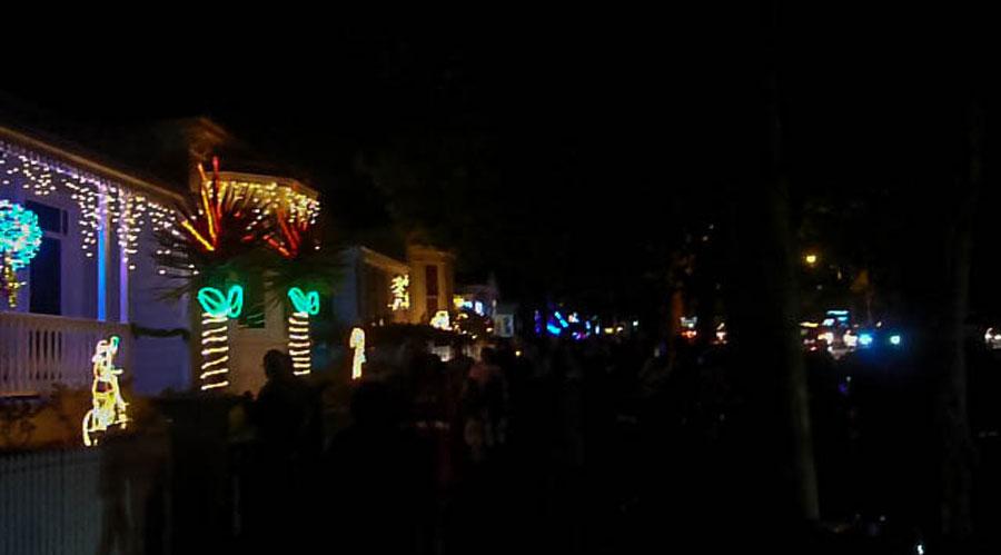 Auckland Christmas Lights