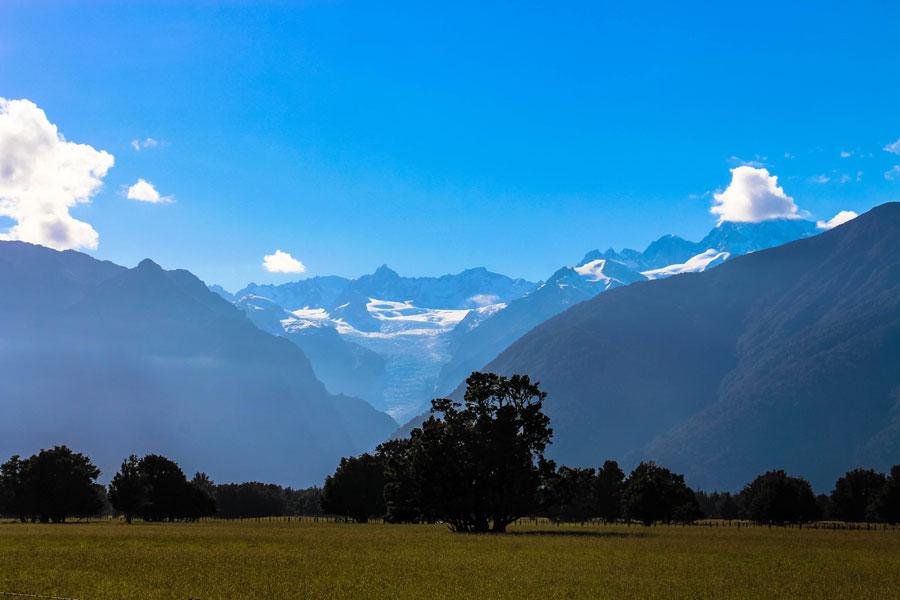 Fox Glacier - Neuseeland